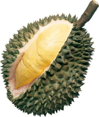 buahan tempatan durian